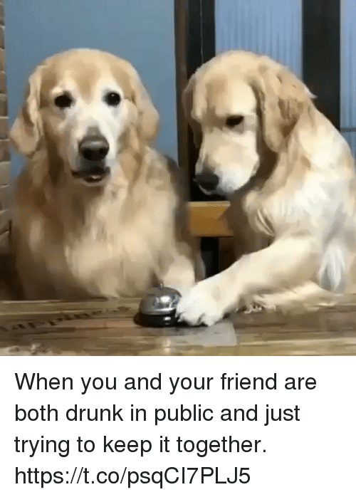 Drunk, Girl Memes, and Friend: When you and your friend are both drunk in public and just trying to keep it together. https://t.co/psqCI7PLJ5