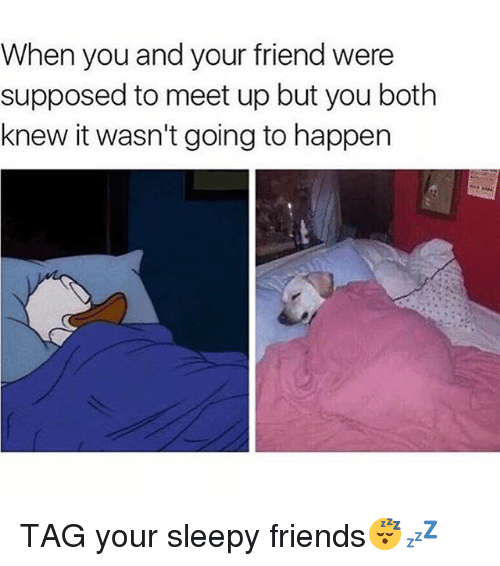 Memes, 🤖, and Friend: When you and your friend were  supposed to meet up but you both  knew it wasn't going to happen TAG your sleepy friends😴💤