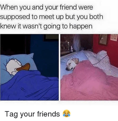 Friends, Funny, and Friend: When you and your friend were  supposed to meet up but you both  knew it wasn't going to happen Tag your friends 😂