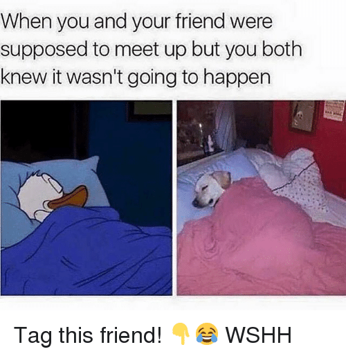 Memes, Wshh, and 🤖: When you and your friend were  supposed to meet up but you both  knew it wasn't going to happen Tag this friend! 👇😂 WSHH