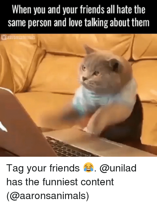 Friends, Funny, and Love: When you and your friends all hate the  same person and love talking about them Tag your friends 😂. @unilad has the funniest content (@aaronsanimals)