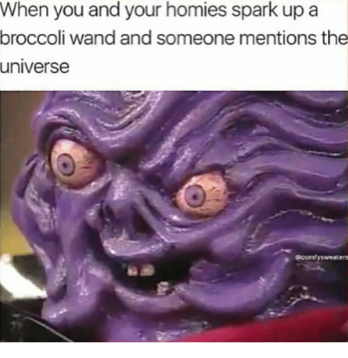 Memes, 🤖, and Universe: When you and your homies spark up a  broccoli wand and someone mentions the  universe  acomfysweaters