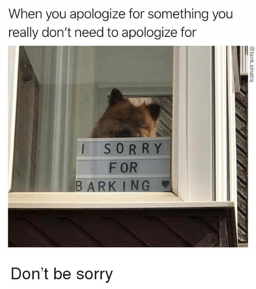 Funny, Sorry, and Ark: When you apologize for something you  really don't need to apologize for  SORRY  F OR  B ARK ING Don't be sorry