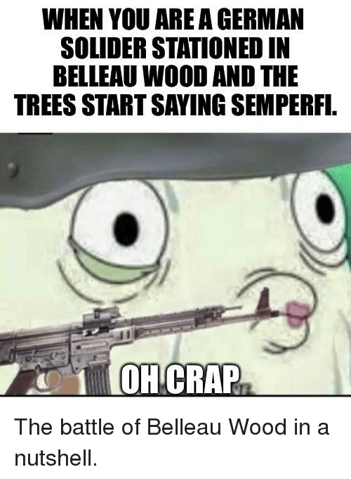 WHEN YOU ARE a GERMAN SOLIDER STATIONED IN BELLEAU WOOD AND