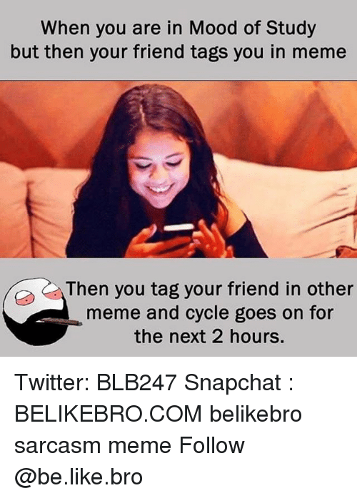 Be Like, Meme, and Memes: When you are in Mood of Study  but then your friend tags you in meme  Then you tag your friend in other  meme and cycle goes on for  the next 2 hours. Twitter: BLB247 Snapchat : BELIKEBRO.COM belikebro sarcasm meme Follow @be.like.bro