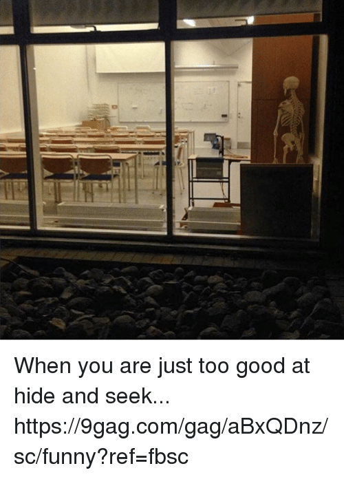 9gag, Dank, and Funny: When you are just too good at hide and seek... https://9gag.com/gag/aBxQDnz/sc/funny?ref=fbsc