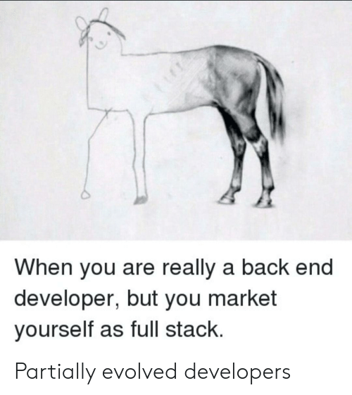 Back, Stack, and Market: When you are really a back end  developer, but you market  yourself as full stack. Partially evolved developers