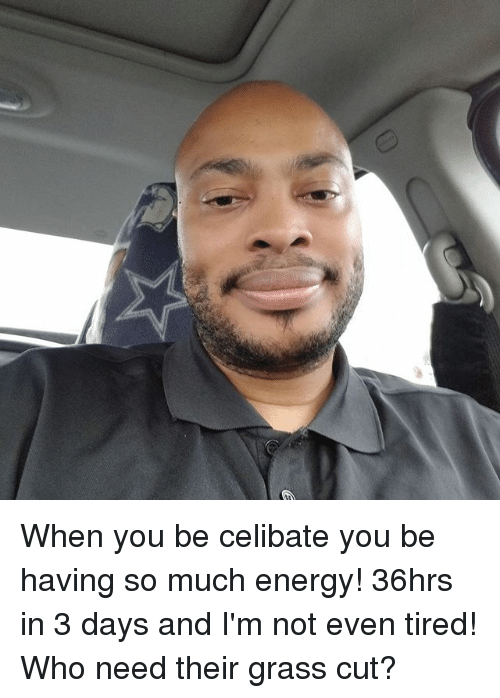 when you be celibate you be having so much energy 26415991 ✅ 25 best memes about celibate celibate memes,Celibacy Meme