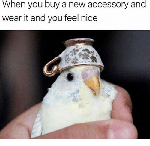 Dank Memes, Nice, and New: When you buy a new accessory and  wear it and you feel nice