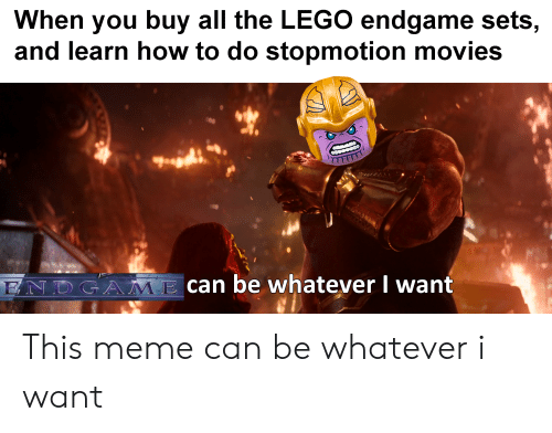 Lego, Meme, and Movies: When you buy all the LEGO endgame sets,  and learn how to do stopmotion movies  6  ENDGAMcan be whatever I want This meme can be whatever i want