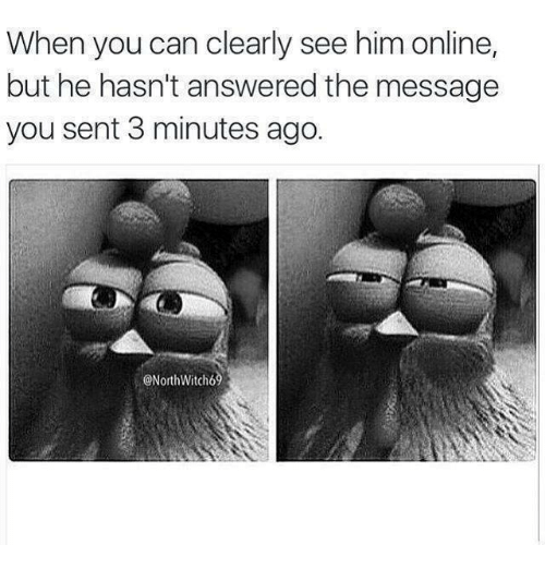 Memes, 🤖, and Him: When you can clearly see him online,  but he hasn't answered the message  you sent 3 minutes ago.  ONorthWitch69