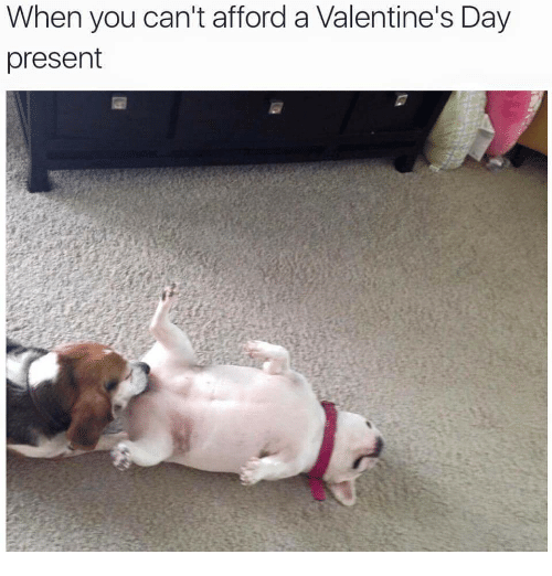 Valentine's Day, Day, and You: When you can't afford a Valentine's Day  present