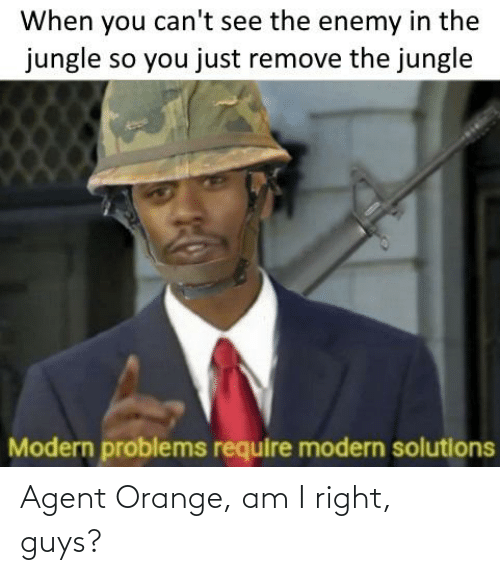 History, Orange, and Agent Orange: When you can't see the enemy in the  jungle so you just remove the jungle  Modern problems require modern solutions Agent Orange, am I right, guys?