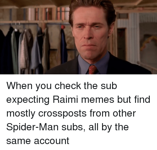 Memes, Spider, and SpiderMan
