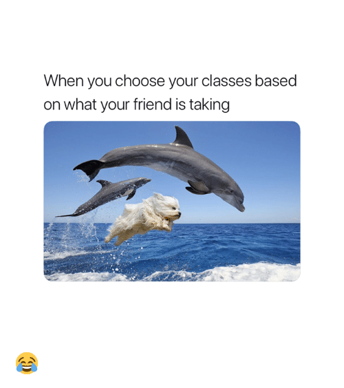 Friend, You, and What: When you choose your classes based  on what your friend is taking 😂