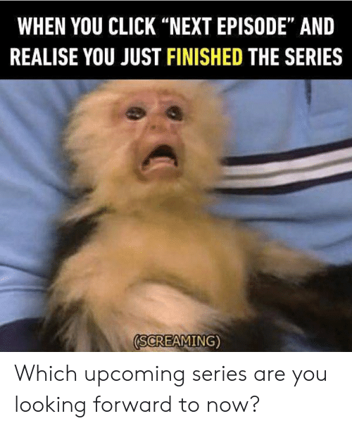 "Click, Dank, and 🤖: WHEN YOU CLICK ""NEXT EPISODE"" AND  REALISE YOU JUST FINISHED THE SERIES  (SCREAMING) Which upcoming series are you looking forward to now?"