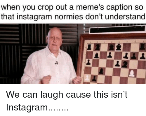 Instagram, Memes, and Reddit: when you crop out a meme's caption so  that instagram normies don't understand