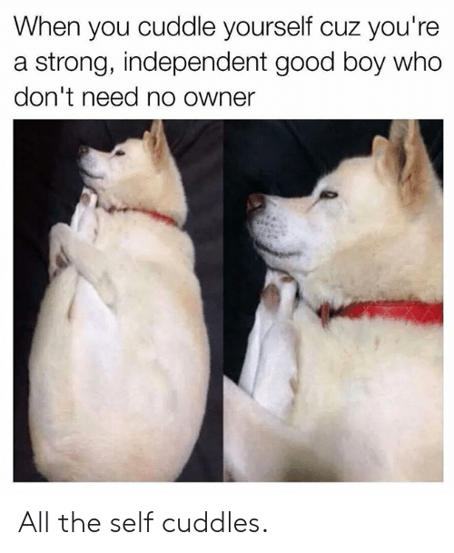 Dank, Good, and Strong: When you cuddle yourself cuz you're  a strong, independent good boy who  don't need no owner All the self cuddles.
