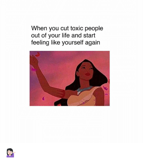 Life, Memes, and 🤖: When you cut toxic people  out of your life and start  feeling like yourself again 💁🏻♀️