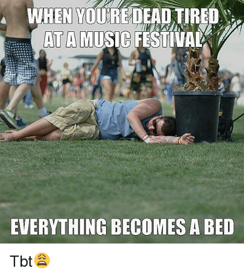 when you dead tired at a music festival everything becomes 19093546 ✅ 25 best memes about music festival music festival memes