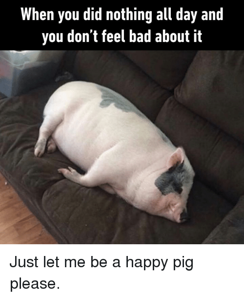 Bad, Dank, and Happy: When you did nothing all day and  you don't feel bad about it Just let me be a happy pig please.