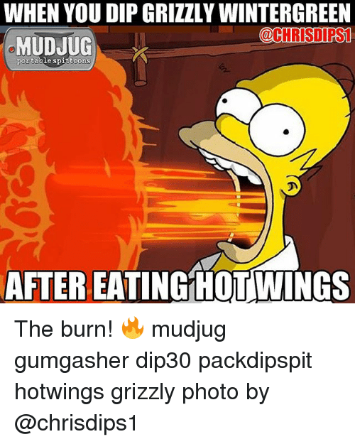 Memes, 🤖, and Spy: WHEN YOU DIP GRIZZLY WINTERGREEN  OCHRISDIRS1  MUDJUG  portable spi  OOMS  AFTER EATING HOTWINGS The burn! 🔥 mudjug gumgasher dip30 packdipspit hotwings grizzly photo by @chrisdips1