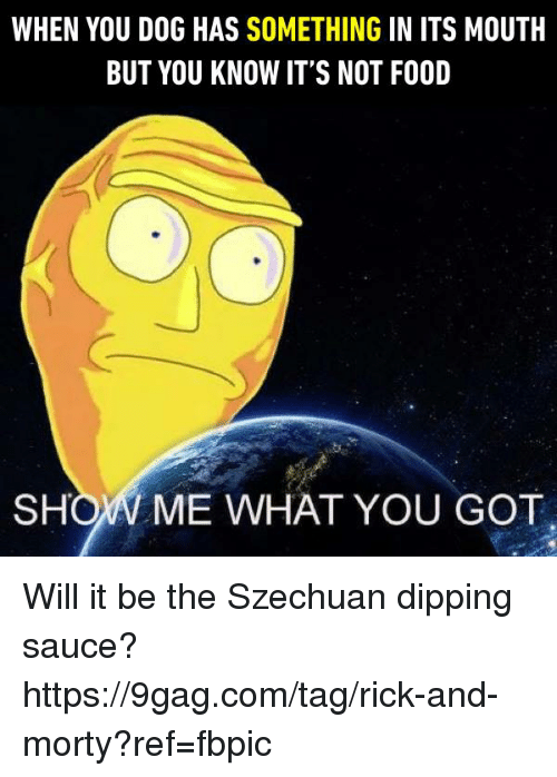 9gag, Dank, and Food: WHEN YOU DOG HAS SOMETHING IN ITS MOUTH  BUT YOU KNOW IT'S NOT FOOD  SHOW ME WHAT YOU GOT Will it be the Szechuan dipping sauce? https://9gag.com/tag/rick-and-morty?ref=fbpic
