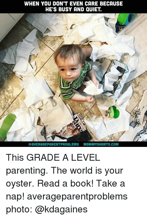 Memes, Book, and Quiet: WHEN YOU DON'T EVEN CARE BECAUSE  HE'S BUSY AND QUIET  OAVERAGEPARENTPROBLEMS MOMMYSHORTS.COM This GRADE A LEVEL parenting. The world is your oyster. Read a book! Take a nap! averageparentproblems photo: @kdagaines