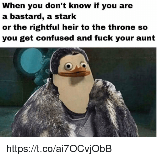 Confused, Memes, and Fuck: When you don't know if you are  a bastard, a stark  or the rightful heir to the throne so  you get confused and fuck your aunt https://t.co/ai7OCvjObB
