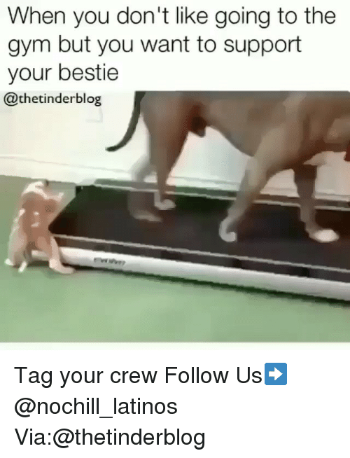 Gym, Latinos, and Memes: When you don't like going to the  gym but you want to support  your bestie  @thetinderblog Tag your crew Follow Us➡️ @nochill_latinos Via:@thetinderblog