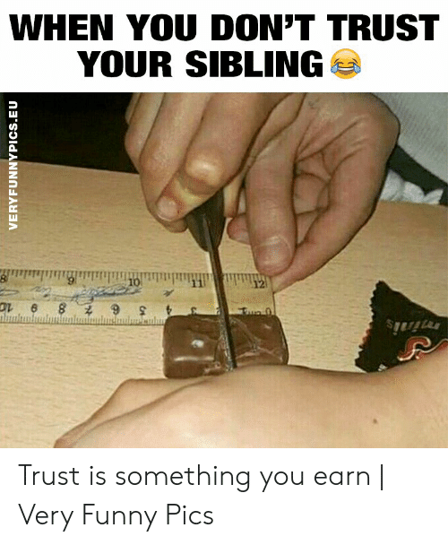Funny, Pics, and You: WHEN YOU DON'T TRUST  YOUR SIBLING  10  12  Fue 0  minis  VERYFUNNYPICS.EU Trust is something you earn | Very Funny Pics