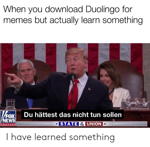 Memes, News, and Reddit: When you download Duolingo for  memes but actually learn something  FOXİ  NEWS  Du hättest das nicht tun sollen  STAT  OF  THE  UNION  channe I have learned something