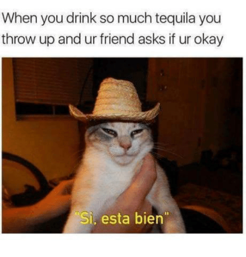 Dank, Okay, and Tequila: When you drink so much tequila you  throw up and ur friend asks if ur okay  Si, esta bien