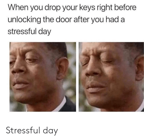 Day, You, and Door: When you drop your keys right before  unlocking the door after you had a  stressful day Stressful day
