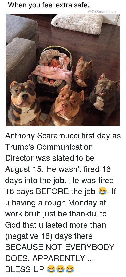Apparently, Bless Up, and Bruh: When you feel extra safe  @DrSmashlove Anthony Scaramucci first day as Trump's Communication Director was slated to be August 15. He wasn't fired 16 days into the job. He was fired 16 days BEFORE the job 😂. If u having a rough Monday at work bruh just be thankful to God that u lasted more than (negative 16) days there BECAUSE NOT EVERYBODY DOES, APPARENTLY ... BLESS UP 😂😂😂