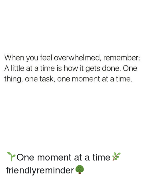 Memes, Time, and 🤖: When you feel overwhelmed, remember:  A little at atime is how it gets done. One  thing, one task, one moment at a time. 🌱One moment at a time🌿 friendlyreminder🌳