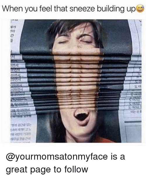 Dank Memes, Page, and Pages: When you feel that sneeze building up @yourmomsatonmyface is a great page to follow