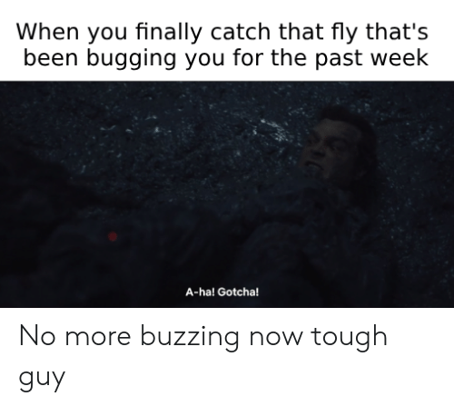 Tough, Been, and Fly: When you finally catch that fly that's  been bugging you for the past week  A-ha! Gotcha! No more buzzing now tough guy