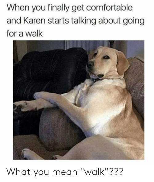 "Comfortable, Dank, and Mean: When you finally get comfortable  and Karen starts talking about going  for a wallk What you mean ""walk""???"