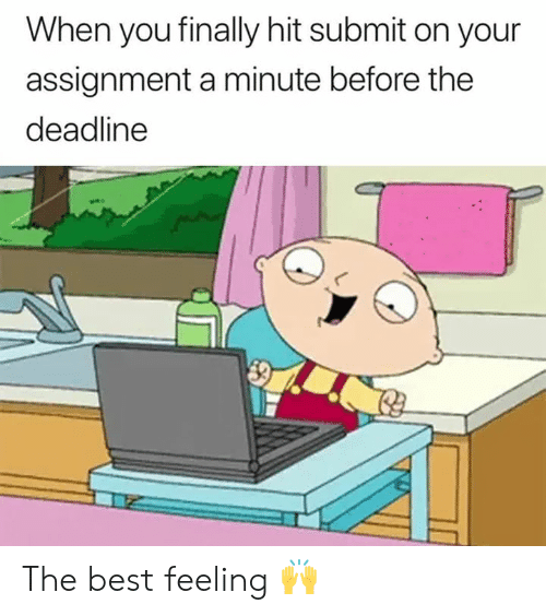 Best, You, and Deadline: When you finally hit submit on your  assignment a minute before the  deadline The best feeling 🙌