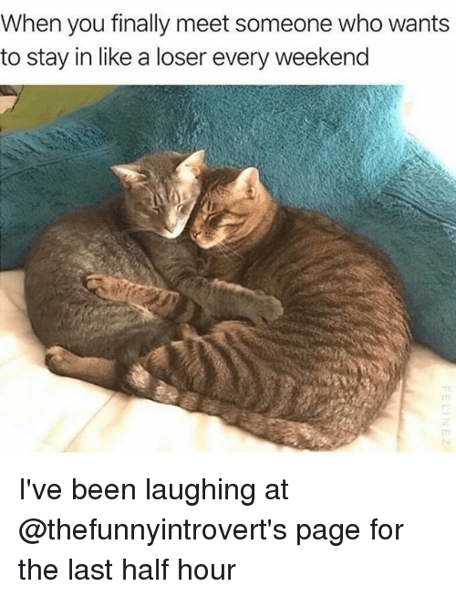 Funny, Been, and Page: When you finally meet someone who wants  to stay in like a loser every weekend I've been laughing at @thefunnyintrovert's page for the last half hour