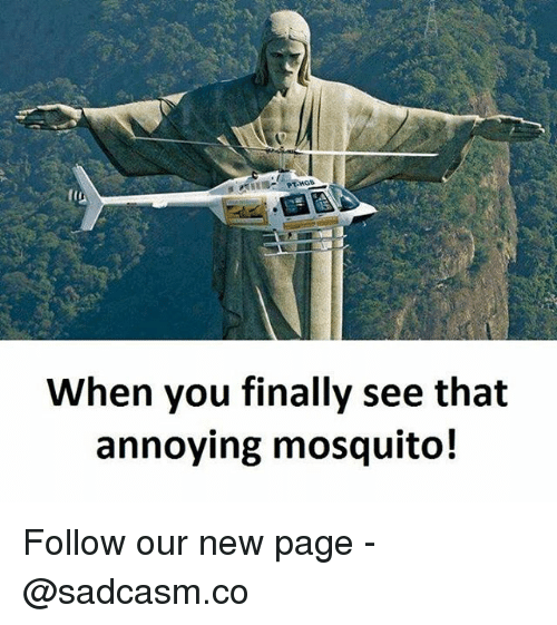 when you finally see that annoying mosquito follow our new 26802971 ✅ 25 best memes about mosquito mosquito memes