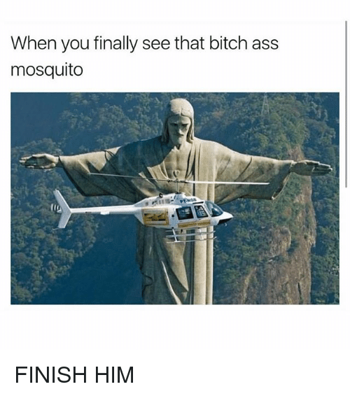 Ass, Bitch, and Funny: When you finally see that bitch ass  mosquito FINISH HIM