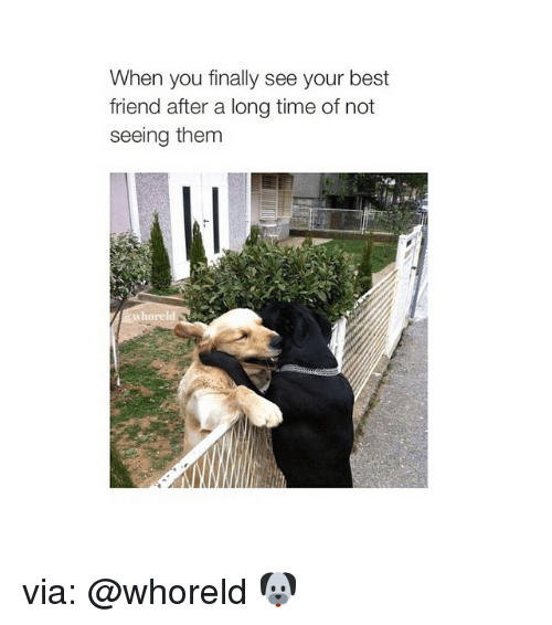 When You Finally See Your Best Friend After a Long Time of Not