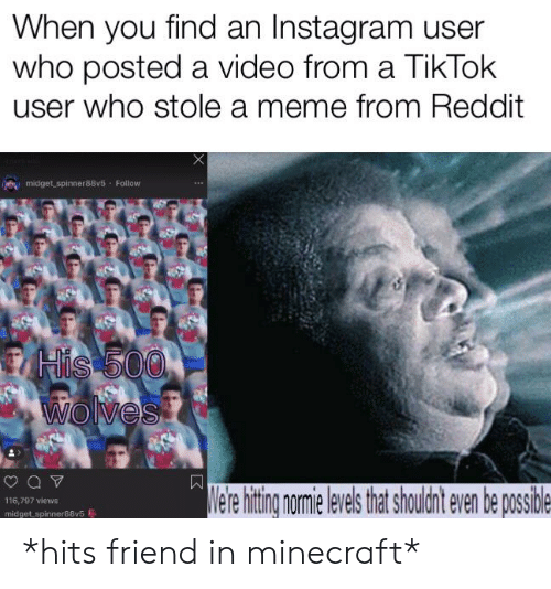 When You Find an Instagram User Who Posted a Video From a TikTok