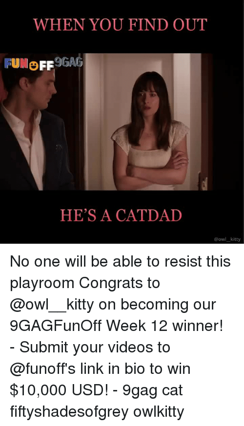 9gag, Memes, and Videos: WHEN YOU FIND OUT  FUMO FF9GAG  HE'S A CATDAD  @owl kitty No one will be able to resist this playroom⠀ Congrats to @owl__kitty on becoming our 9GAGFunOff Week 12 winner!⠀ -⠀ Submit your videos to @funoff's link in bio to win $10,000 USD!⠀ -⠀ 9gag cat fiftyshadesofgrey owlkitty