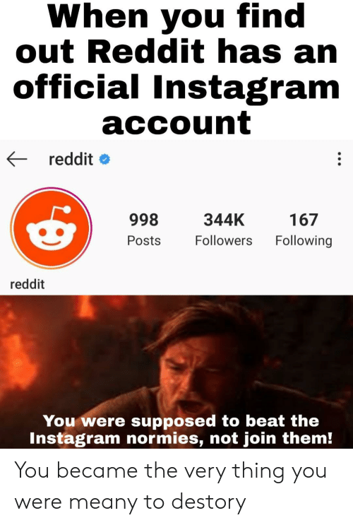 Instagram, Reddit, and Following: When you find  out Reddit has an  official Instagram  account  reddit  998  344K  167  Following  Followers  Posts  reddit  You were supposed to beat the  Instagram normies, not join them! You became the very thing you were meany to destory