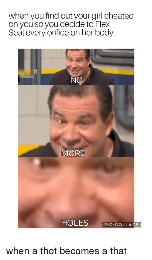 Flexing, Thot, and Holes: when you find out your girl cheated  on you so you decide to Flex  Seal every orifice on her body  NO  MORE  HOLES  PIC.COLLAGE