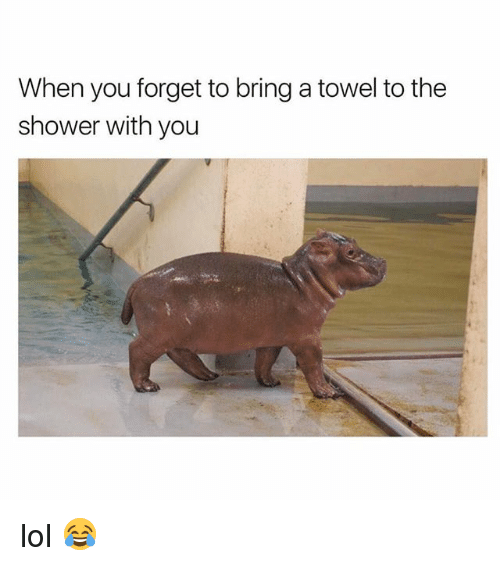Lol, Memes, and Shower: When you forget to bring a towel to the  shower with you lol 😂