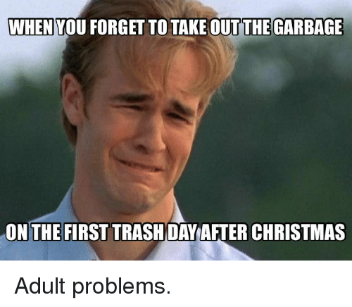 Christmas, Memes, and Trash: WHEN YOU FORGET TO TAKE OUTTHE GARBAGE  ON THE FIRST TRASH DAY AFTER CHRISTMAS Adult problems.